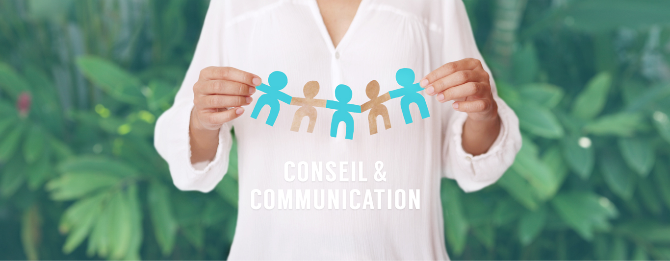 Conseil & Communication U-Bridge