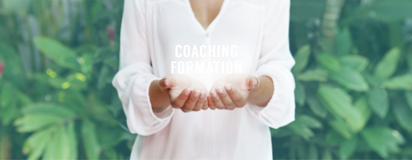 ubridge-formation-coaching